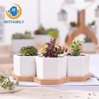 Home Decor Bonsai Planters Set of 4 Hexagon Flowerpots White Ceramic Succulent Plant Pot with Bamboo Stand