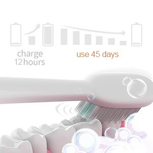 Sarmocare Electric Toothbrush for Adults USB Sonic Rechargeable Teeth Brushes with 3 Replacement Heads Smart Timer Waterproof