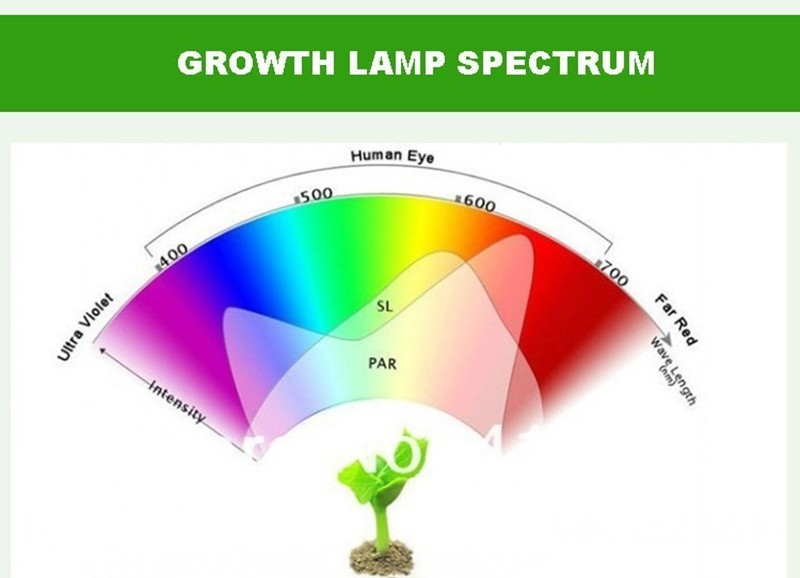 grow light 01 800