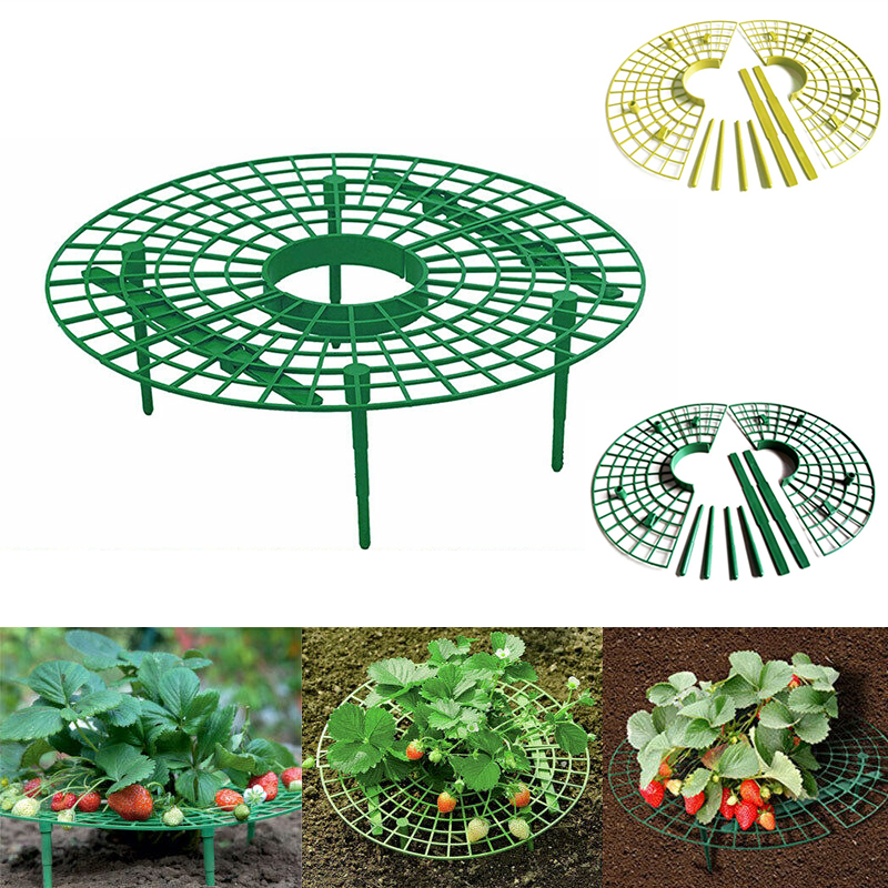 Plant Support Strawberry Planting Rack Fruit Support Plant Climbing Vine Props Flower Pillar Gardening Bracket Agriculture Tools