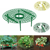 Strawberry Fruit Rack Support