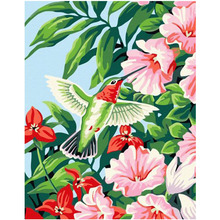 WEEN Hummingbird-Framed Picture DIY Oil Painting By Numbers Painting&Calligraphy Modern Home Decor 40x50cm