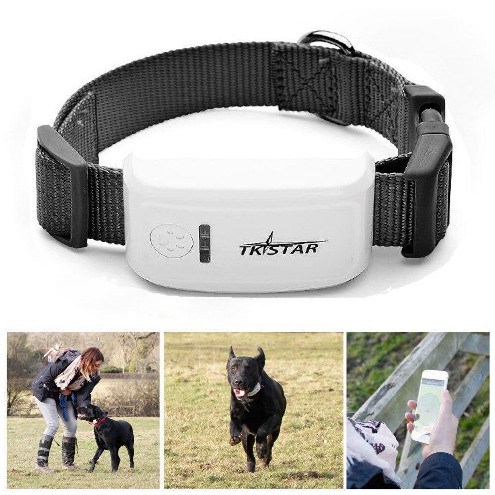 2017 intelligent Bluetooth traceur GPS localisateur étiquette alarme Pet chien Tracker Finder étanche suivi emplacement pour animal chien chat TK600