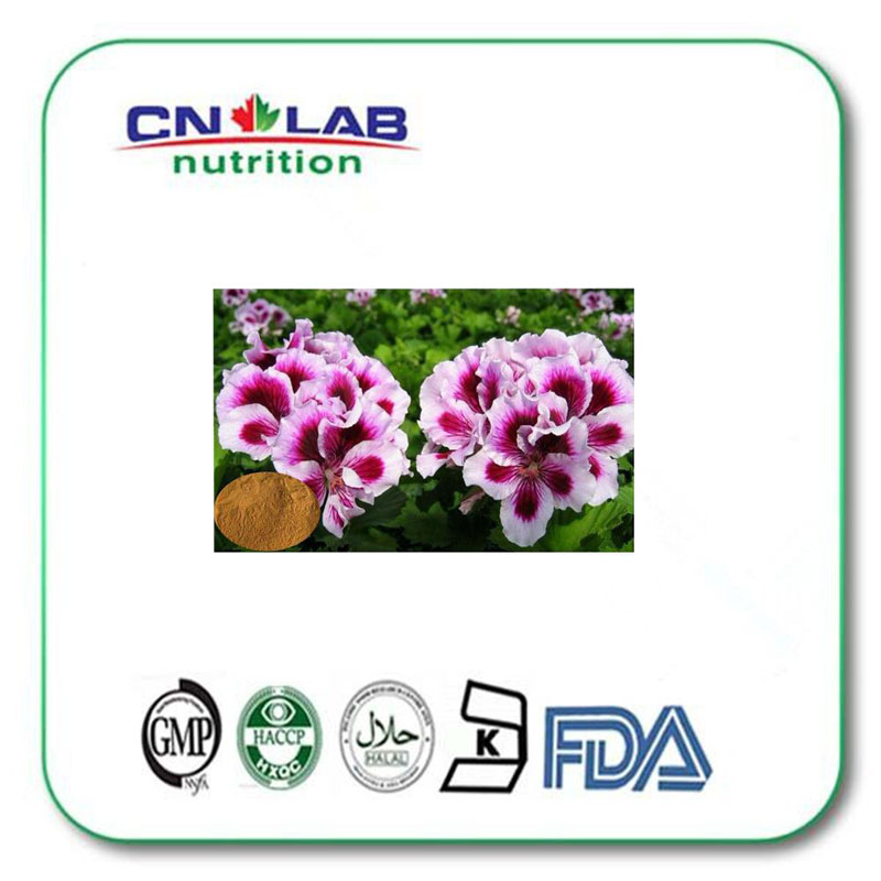 geranium extract dmaa/geranium extract/geranium extract powder 1000g/ lot hot sale платья