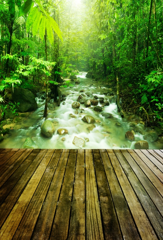 Laeacco Spring Forest River Trees Wooden Floor Scenic Photography Background Customized Photographic Backdrop For Photo Studio
