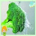 10:1 органических Обезвоженные брокколи экстракт порошок Сульфорафан 100 г