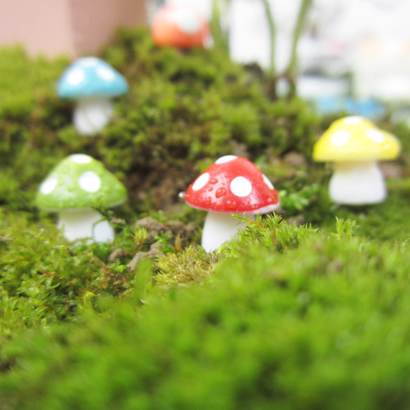 Zakka Miniature Figurine Colorful Resin Mushrooms 0.7*1 cm Cute Dolls Micro Garden Decoration Crafts Kids Gift Ornaments Tools