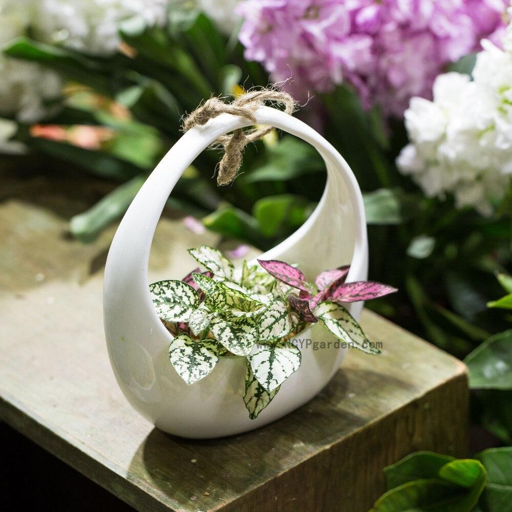Small White Round Hanging Ceramic Flower Pot Basket Vertical Garden ...