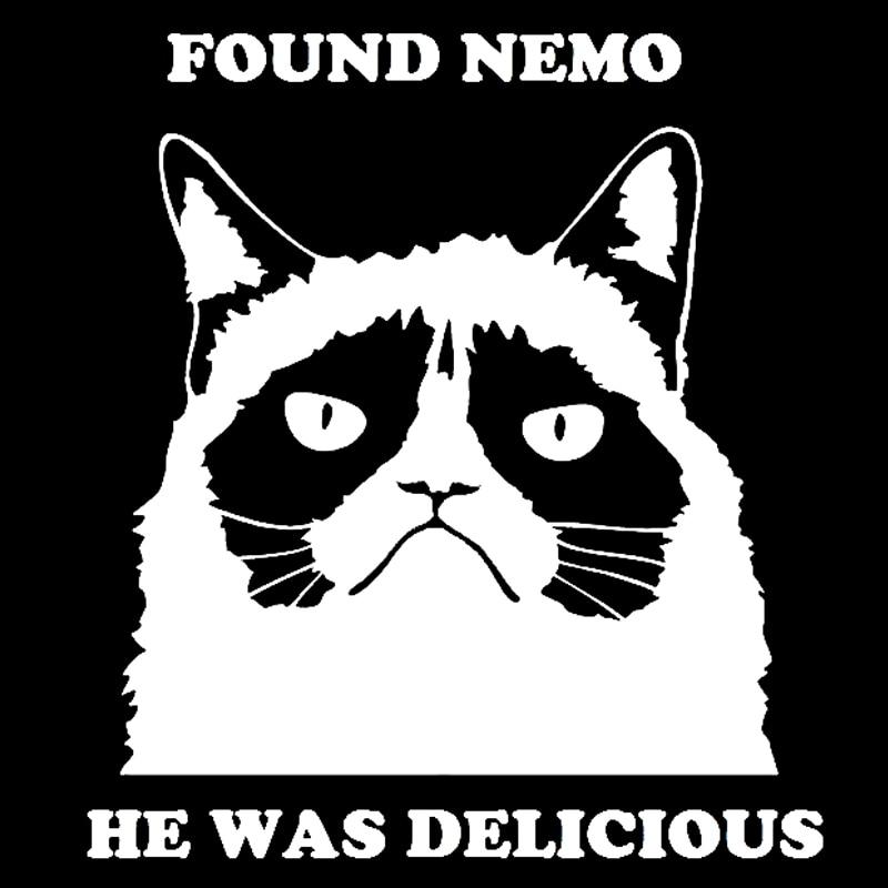 Wholesale 30pcs/lot Grumpy Cat Found Nemo Funny Car Truck Window Vinyl Decal Sticker found in brooklyn