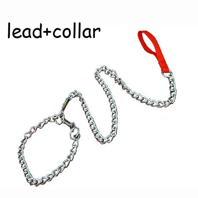 Metal stainless steel extra small big dog chain collar