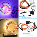33Feet of Lighting Wire Light 100LED String Light +12v Power + Remote Control for Christmas Wedding Party Garland Decoration
