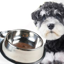 Stainless Steel Pet Cat Feeder High Quility Dog Puppy Food Water Feeding Dispenser Non-Slip Dish Bowl For Pet