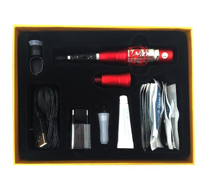 Kit de Dragon rouge Kits de tatouage de maquillage permanents cosmétiques complets avec des aiguilles de pistolet à tatouage-in Kits De Tatouage from Beauté & Santé on AliExpress - 11.11_Double 11_Singles' Day 1