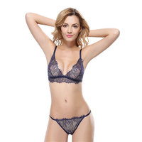 Sexy Lingerie Lace Underwear Bra Brief Sets Gauze Lace Embroidery Ultra Thin Transparent Sexy Bra Underwear