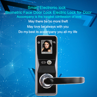 Eseye Face Facial Recognition Door Lock Face Smart Lock Digital Intelligent Electronic Door Lock Safe For Smart Home Anti theft
