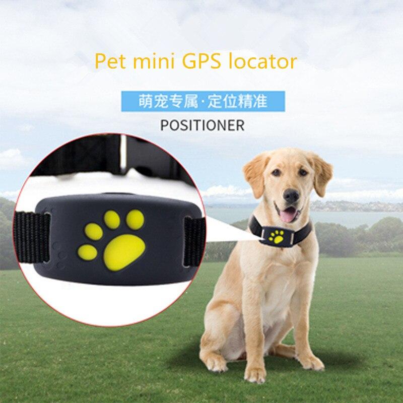 Mini chat chien collier pour animaux de compagnie gps Tracker localisateur sans fil intelligent traqueur anti-perte pour animaux de compagnie IP67 étanche collier tracker app