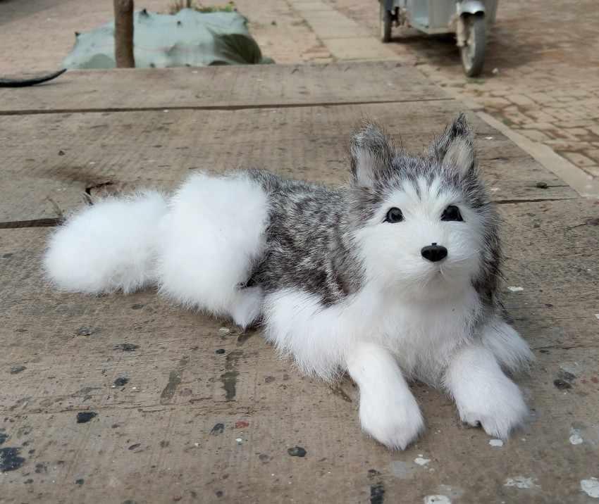 Grande modelo de simulação de 30*11 CM propenso cão husky hard, polietileno & pele de cão, prop. decoração brinquedo, presente de Natal 2546