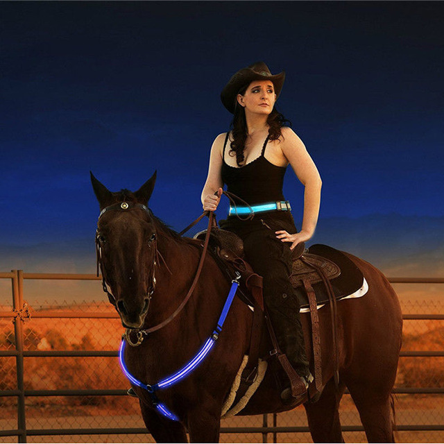 Night Visible Horse Riding LED Equestrian Harness   14