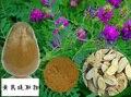 1 kg frete grátis 100% Natureza extrato da raiz de Astragalus polissacarídeo de 50% UV