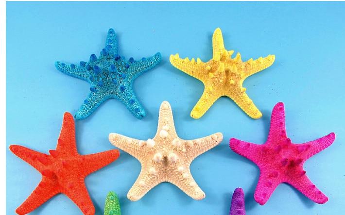 Decoration Crafts Natural Conch Ss Starfish 11cm China Mainland