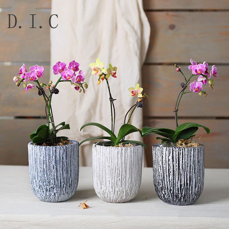 Small Gray Cement Round Succulent Plant Flower Pot