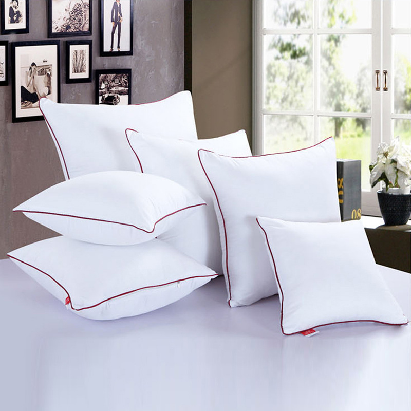 Pillow Core 50 50 cm Brushed Pillow Core Back Cushion Core Velvet Pillow Core Size 45 45cm in Cushion Cover from Home Garden