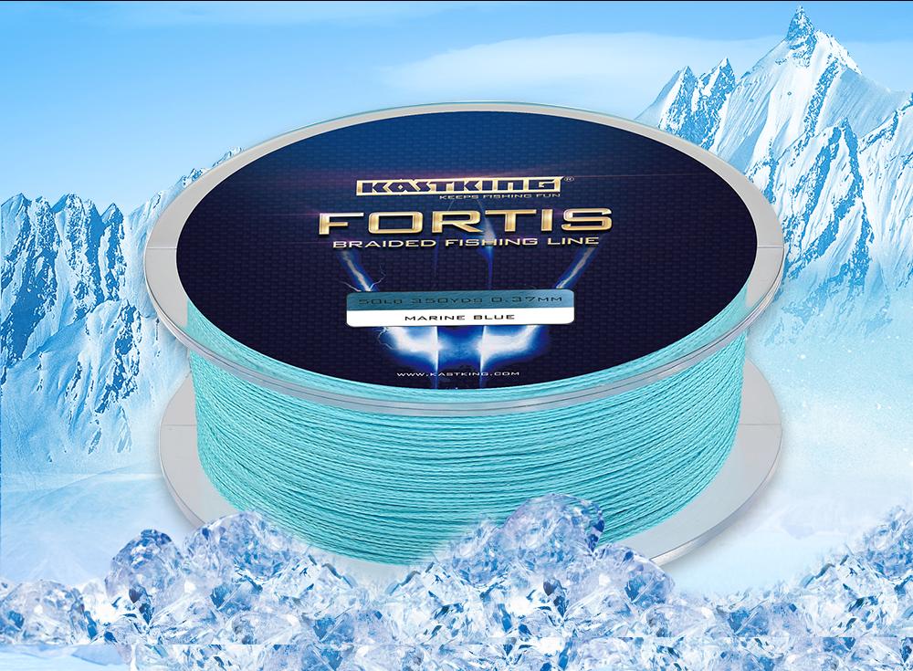 Fortis---320M_05