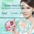 AFY Oro Caracol Crema facial Hidratante Que Blanquea Cuidado de La Cara de Reparación Anti arrugas cuidado de la piel facial oscuro Pigmento Peca eliminación