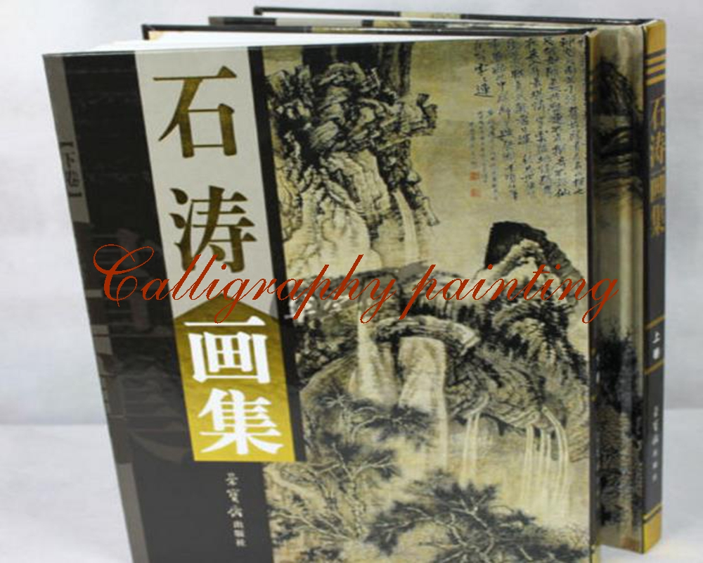 Famous Chinese Painting Masters SHI TAO Sumi-e Landscape Mountain Water Book цена