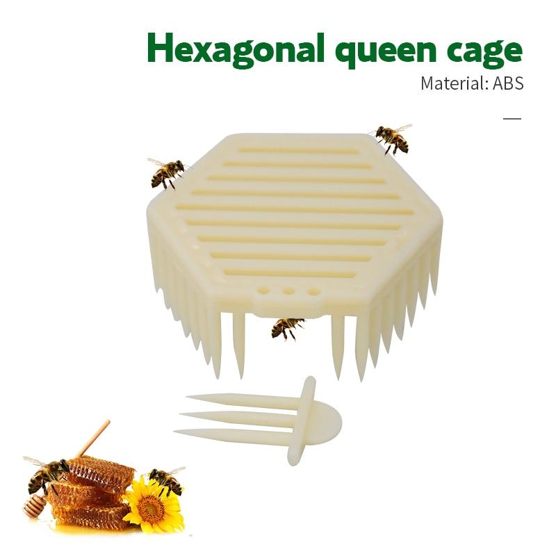 2pcs/bag Beekeeping Tool Queen Marker Cage Bee Catcher Tools Plastic Hexagonal Beekeeper Needle Type Catching Bees Supplies