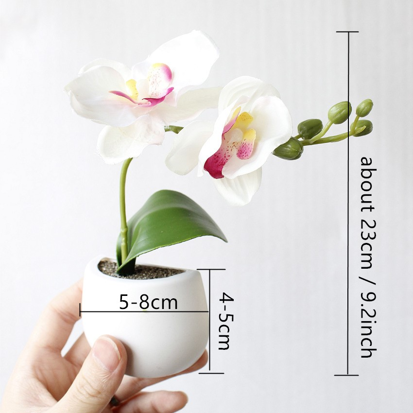 Bonsoplant Fridge Magnets Potted Artificial Green succulent Bonsai plants HTB1OGyahCMmBKNjSZTEq6ysKpXaP fridge magnets