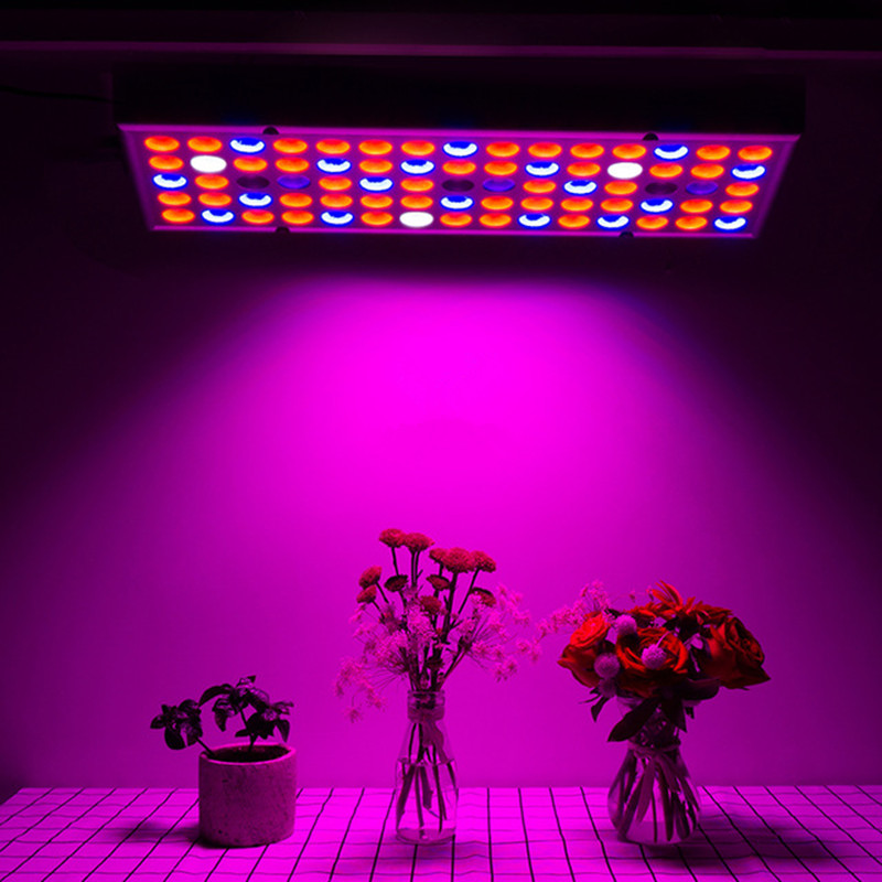 25W LED Grow Lights Full Spectrum Fitolampy Hydroponics Phyto Lamp For Flowers Vegetables Seedlings Greenhouse Plant Grow Lamp