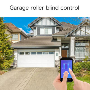 Image 3 - Curtain Switch Smart Wifi Remote Garage Doors Control Touched Switch Curtain Motor Blind Roller Shutter Timing Voice Control