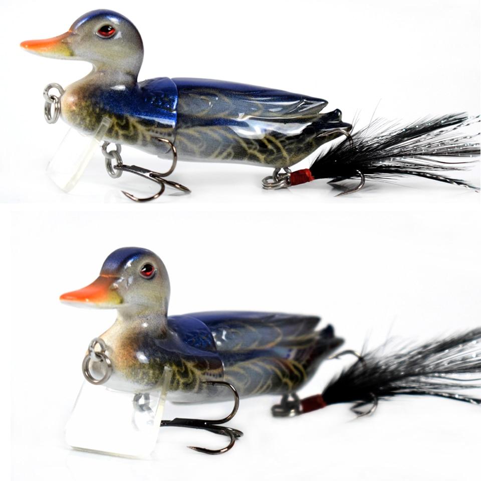 duck01a-1