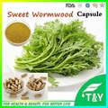 Ajenjo dulce Cápsula/Artemisia annua L. extracto con Artemisinine