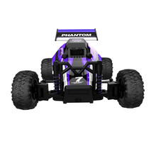 Car-styling rc car Educational Toy Cool 2.4GHZ 2WD Radio Remote Control Off Road RC RTR Racing Car Truck free shipping  AP24