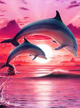 Full Round Drill 5D DIY Diamond Painting Dolphin couple 3D Embroidery Cross Stitch Home Decor