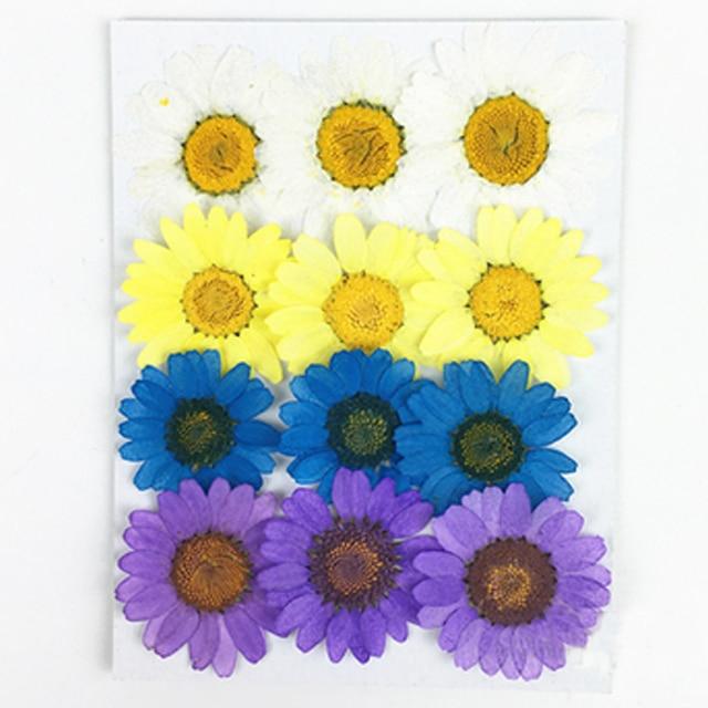 Mixed Chrysanthemum Epoxy Dried Pressed Flowers Phone Case DIY Free Shipment 1 lot/120pcs