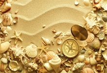Laeacco Tropical Beach Shell Starfish Sand Compass Baby Child Photographic Backgrounds Photography Backdrops For Photo Studio