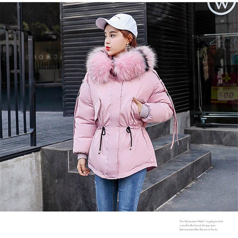 Confortable Et Automne Nouveaux De D'hiver Sauvage Courte Produits Mode Veste Femelle Coton 2018 Lâche 58gqwfWq