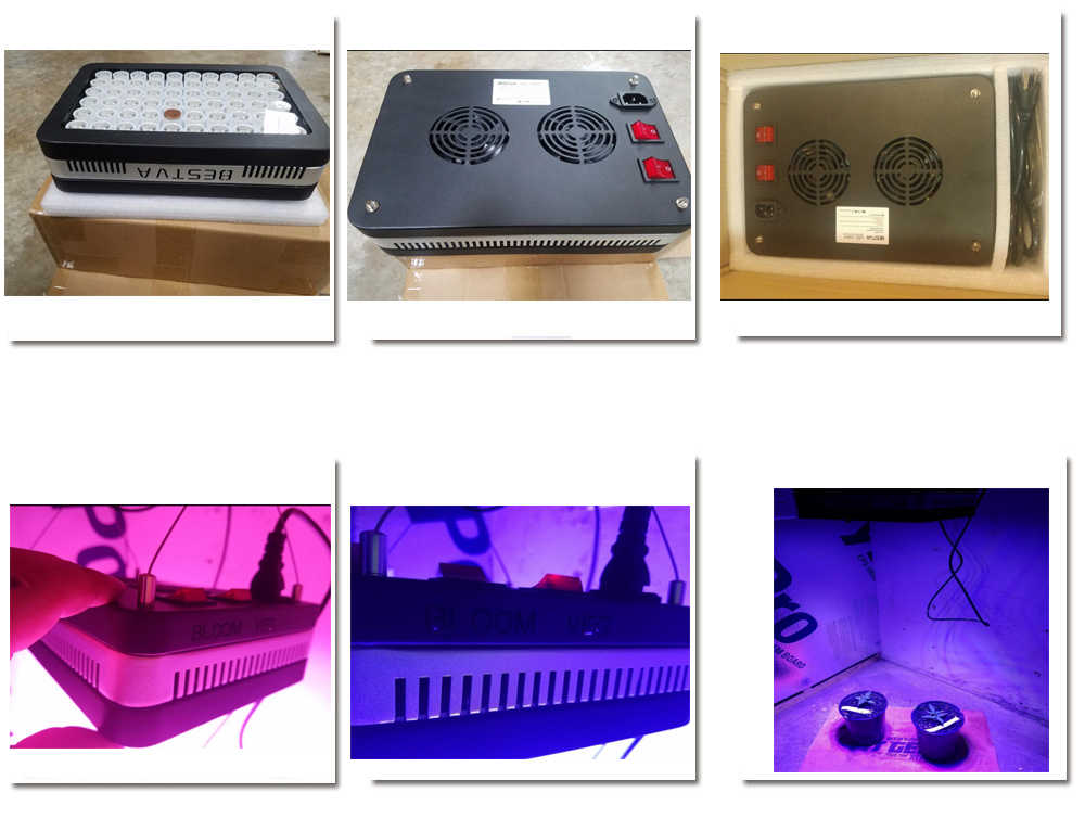 Светодиодный отражатель для роста ligh Elite 600 Вт Светодиодный светильник для выращивания всего спектра для теплицы Гидропонные комнатные растения, овощи и цветы