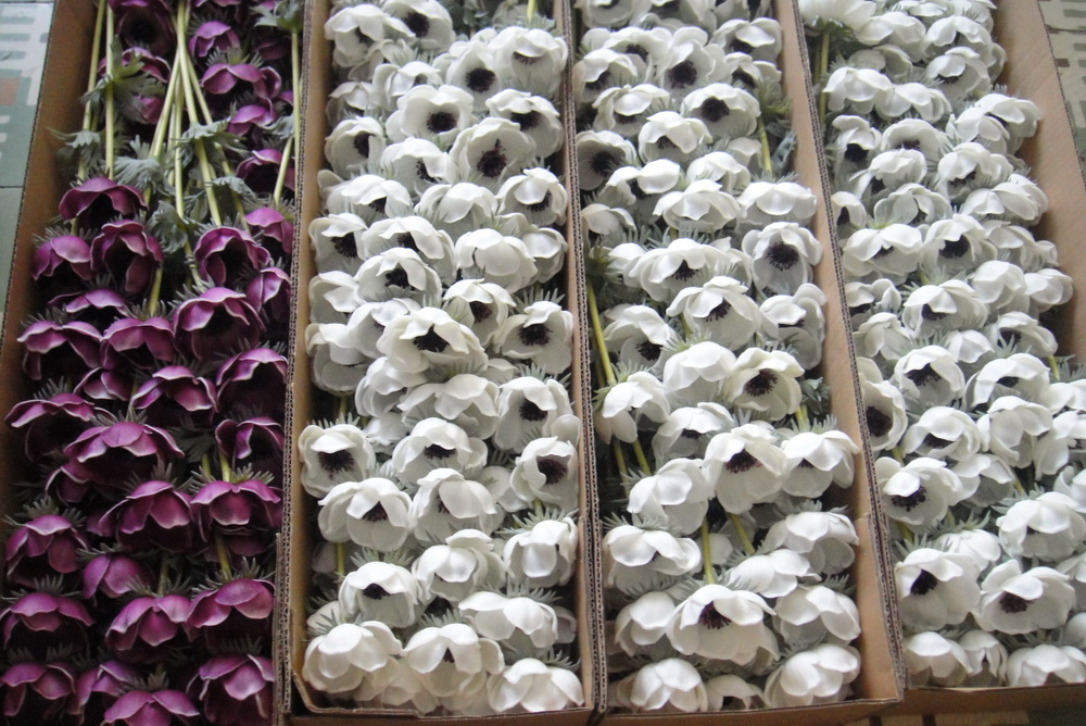 100 pcs wholesale real touch anemones wedding flowers for bouquet 100 pcs wholesale real touch anemones wedding flowers for bouquet table centerpieces natural pu flowers white anemones in artificial dried flowers from mightylinksfo