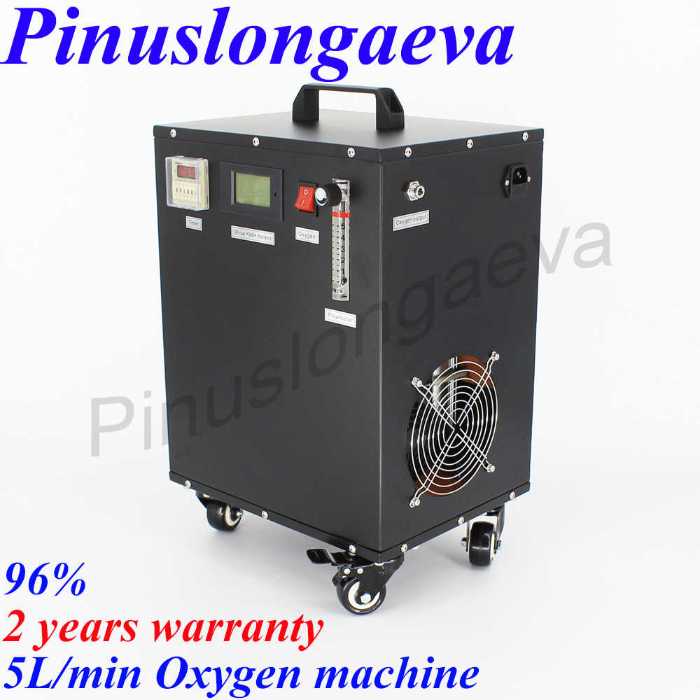 DEDAKJ DDT 2F Portable Oxygen Concentrator Generator