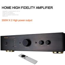 ROYANGES TS-2 power amplifie class d 2.1 audio  Stereo Power Amp 200W*2