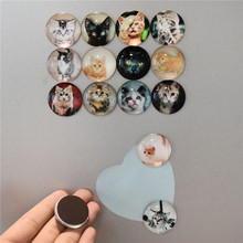 Cartoon dog  Refrigerator Sticker Fridge Magnet Cabochon Message Holder Home Decor