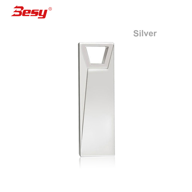 gold/Silver Metal USB 2.0 flash drive 128 GB High Speed pendrive 128GB flash drive usb flash 2.0 keyring pen drive(China)