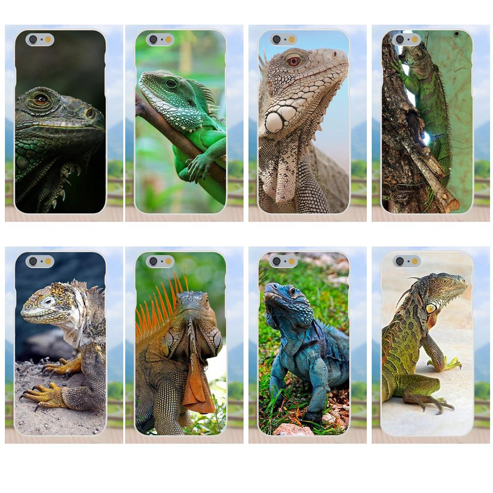 For Apple iPhone X XS Max XR 4 4S 5 5C 5S SE 6 6S 7 8 Plus Soft Tpu Phone Case Iguana Lizard Animal Brazil Iguacu Jungle