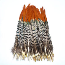 Top quality 20pcs/lot natural Pheasant Feather Party decorations 5-30cm DIY red feathers for jewelry making Carnival Headwear