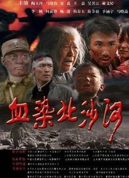 《血染北沙河》2010年中国大陆剧情,战争电影在线观看