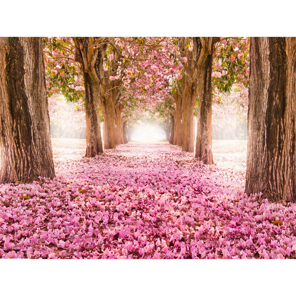 Pink Cherry Blossom Trees Backdrops For Photography Petals